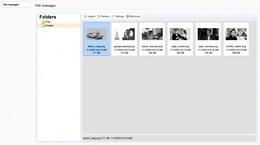 Screenshot File manager